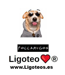 chat online follamigos