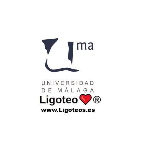 Grupos de whatsapp universidad de Málaga